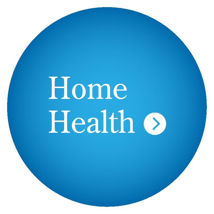 Home Health Icon